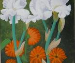 Lacy Snowflake Iris