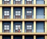 A Joyful Day in Urban Matrix