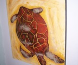 Turtle in Hawaii-North Shore