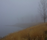Fog, Grays Lake, Des Moines