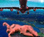 Torso 02 plane