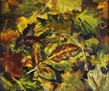 Yelow leaves