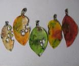 Pohutukawa Leaves . Sml 2013