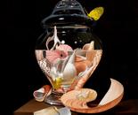 Shells Under Glass