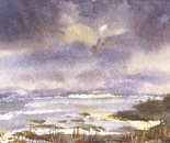 seashore landscape 601