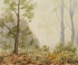 autumn woods 605
