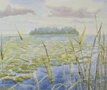 lakeside landscape 617