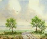 landscape 618