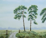 three pine trees 619