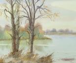 riverside landscape 624