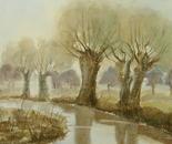 riverside landscape 634