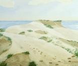 seashore landscape 641