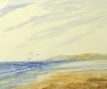 seashore landscape 646