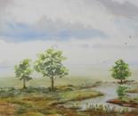 riverside landscape 652
