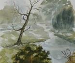 river landscape 664