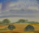 summer landscape 665
