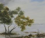 lakeside landscape 667