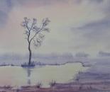 lakeside landscape 668