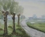 riverside landscape 673