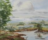 riverside landscape 676