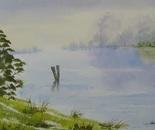lakeside landscape 678