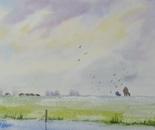wide landscape 679