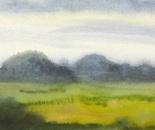 summer landscape 684