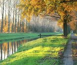 Canal in the automn