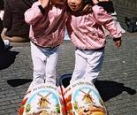 Dutch Twins