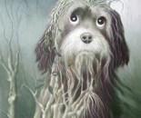 Harmless dog
