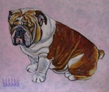 BULLDOG SERIES II