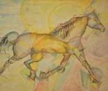 Studio per la scomposizione di un cavallo