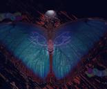 Zazen Butterfly