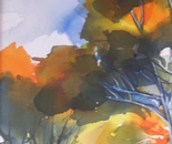The colours of spring (sold)