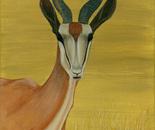 Springbok - Alerted