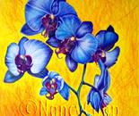 Blue Orchids #1