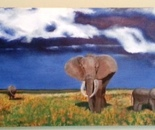Elephants in Field after Rain
