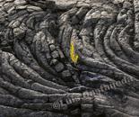 Lava Beds-6