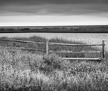 NANTUCKET FENCE IN GRASS