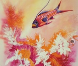 Lonely Pink Fish