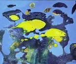 PU 04 Yellow Fishes