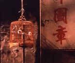 Hong  Kong , 1991