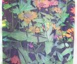 Flores en Tinta I