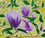 Lila Magnolia