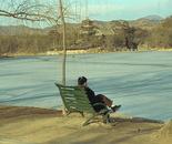 Lakeside Solitude I