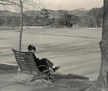 Lakeside Solitude II