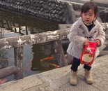 """Koi"" Little Child"