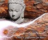 Buddha 4 All