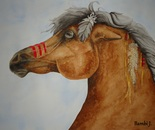 War Pony
