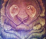 """Tigris"" 100X80 Acrylic on Canvas"